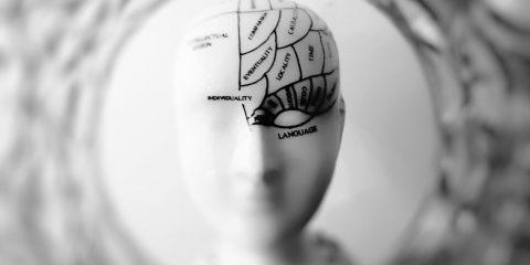 Neuroplasticidad y dolor de espalda